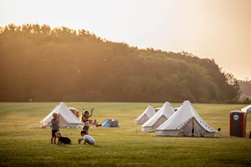Shambala Festival: Camp Kin: Come camping with us this Summer: Bookings are live! 8